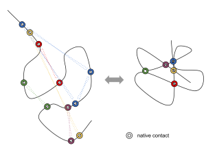 native contact schematic