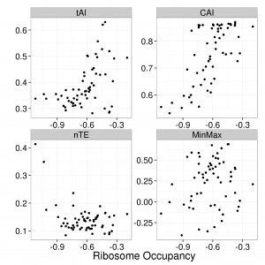 Comparing the log transformed ribosome profile data to the translation speed as defined by each of the algorithms for B. Subtilis. We show the mean optimality against the mean optimality when stratified by codon, finding that the assigned values for each algorithm fails to capture the variation of the ribsome profiling data.